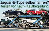 Jaguar Geschenkgutschein, jaguar Etype  mieten , Jaguer-E leihen , Oldtimerausfahrten , E-Type vergleichen , E-type testen, Kaufbegleitung vom Jaguar-Club